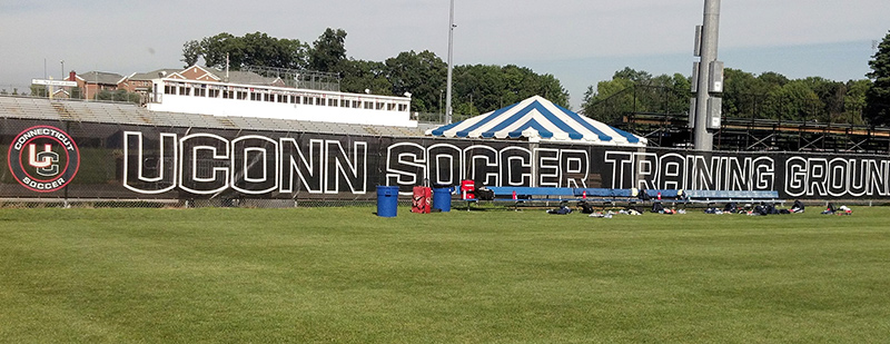 Professional Quality Athletic Screen