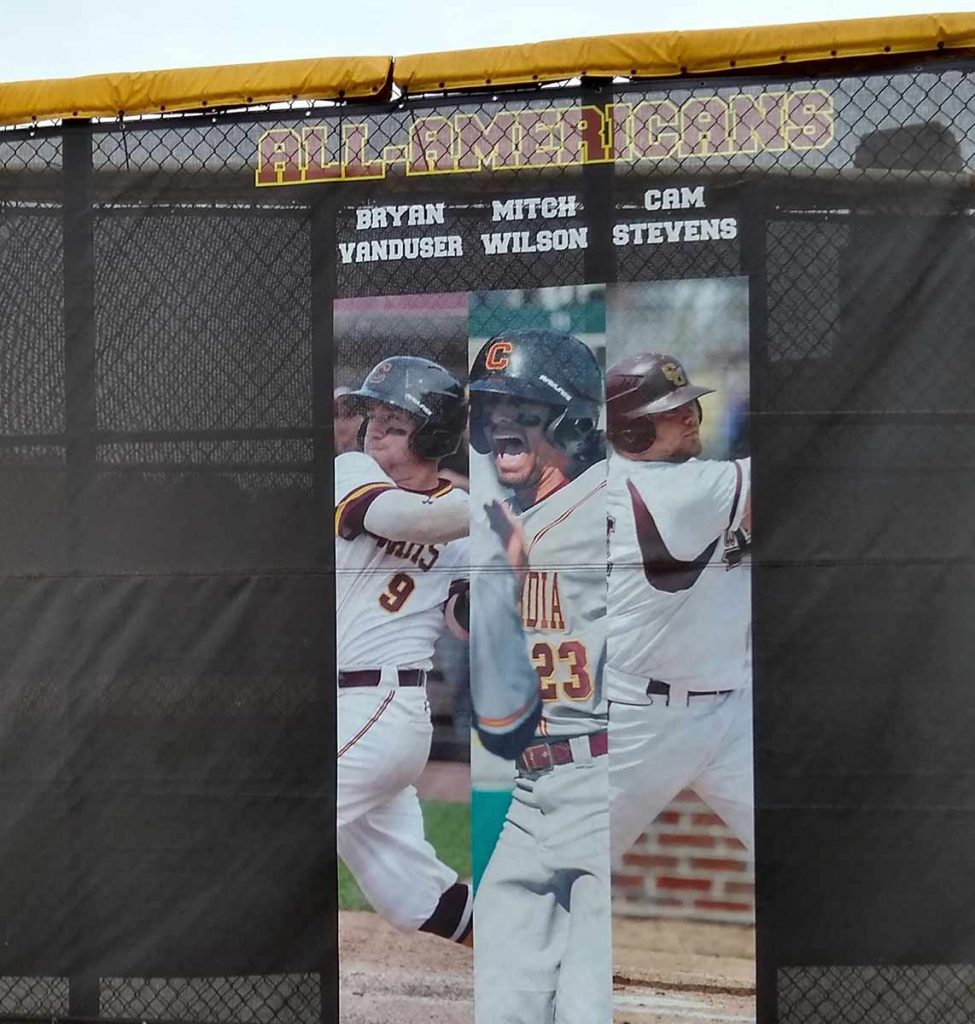 Expert Printed Outfield Fence Screen